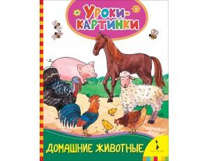 Книга Домашние животные. Уроки-картинки.